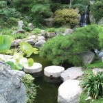 UCLA to sell treasured Japanese garden amid financial difficulty