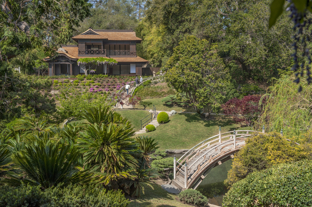 Japanese Gardens at The Huntington reopens after year-long ...