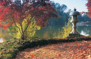 VANDALISM IN SEASON ­— The Shinzen Japanese Garden in Fresno's Woodward Regional Park is a five-acre Japanese garden designed in part by Japanese American landscape architect Paul Saito. The garden, split into four sections according to the seasons, offers a colorful shoreline along the lake during the fall and beautiful flowers in the spring. The garden recently faced issues with vandalism as stone lanterns (bottom right) were pushed over and damaged.                   photos by Tom Skelton and Richard Kassabian