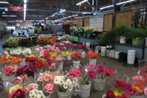 NO BED OF ROSES — The future of the San Francisco Flower Mart, which serves as a central distribution base for Californian and imported flowers, has tenants and customers alike worried as new developments loom.  photo by Tomo Hirai/ Nichi Bei Weekly