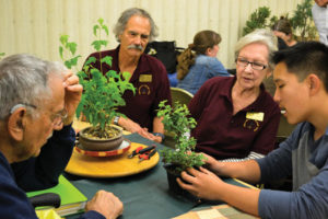 PROMOTING PATIENCE — (Above left): Sacramento Bonsai Club member Ben Nguyen (far right) shows members Ray Rodriguez (far left), John Schwaner (center, left) and Jean Schwaner (center, right) how to design the Cork Bark Jade plant, the focus plant for the day's meeting. photo by Heather Ito/Nichi Bei Weekly