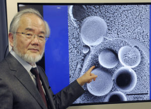 NOBEL PRIZE WINNER — File photo taken in March 2015 shows Japanese scientist Yoshinori Osumi attending a press conference in Tokyo after winning the Canada Gairdner International Award. Osumi won the 2016 Nobel Prize in physiology or medicine on Oct. 3 for discovering and elucidating mechanisms for autophagy, an intracellular process that degrades and recycles proteins.   Kyodo News photo