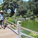 50 years of good will:  San Mateo celebrates Japanese Garden anniversary