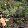 THE Joy of Home Gardening: Community garden feeds the body and mind