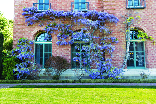 Filoli estate's ties to the Japanese American experience